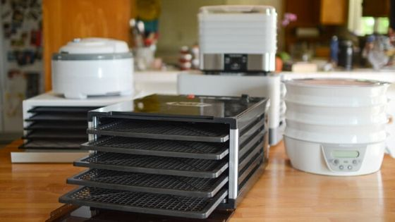Best Dehydrators